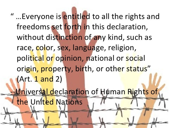 universal declaration of human rights document number