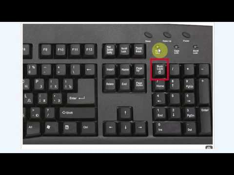 how to type a document on toshiba laptop