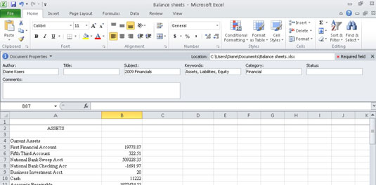 where is the document panel in excel 2010