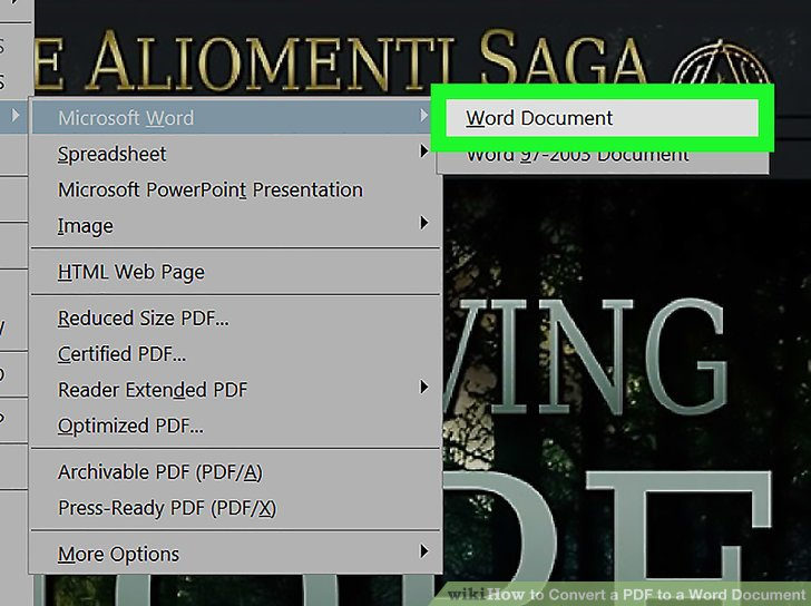 how to change a document from pdf to word