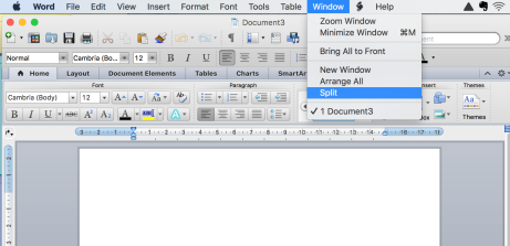 how to make word document split screen on mac