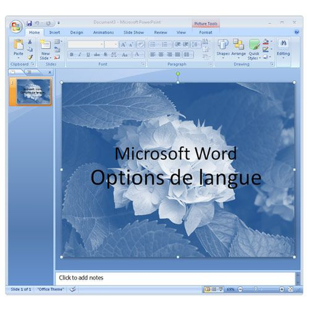 translate french document to english in word